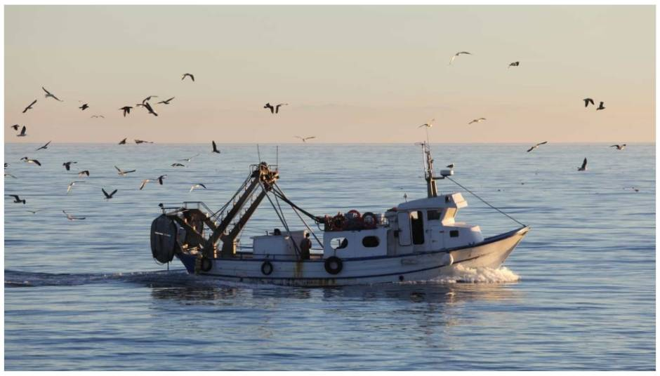 "Fishermen ""concerned"" about the state of the ports of Varzim and Vila do Conde"